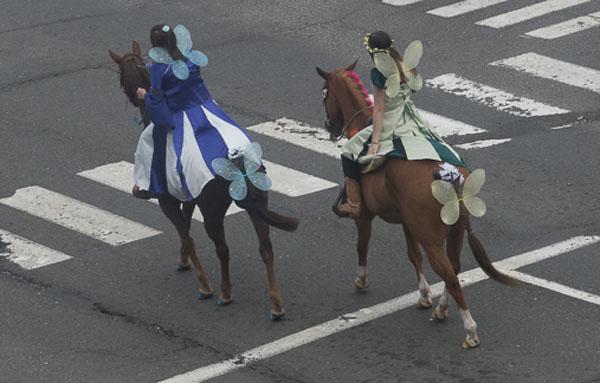 Rotery-paradefairies on horseback